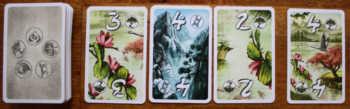 Beispiel 3: Zu viel riskiert, alle Karten aufnehmen.