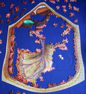 Fortschritte beim Puzzeln - Schritt 7