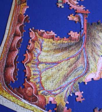 Fortschritte beim Puzzeln - Schritt 8