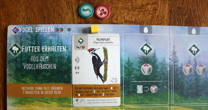 Der erste Vogel in der Waldreihe wird gespielt.