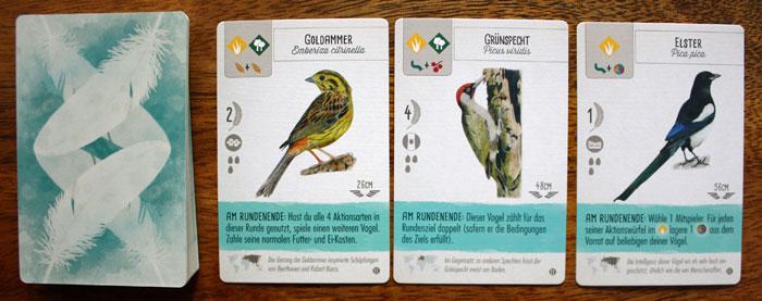 Die neuen Vogelkarten der Europa-Erweiterung.