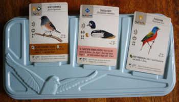 Drei unterschiedliche Vögel und Zusatzaktionen liegen in der Vogeltränke aus.