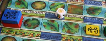 Mit der Sonne dürfen alle Spieler ihre Tiere aus dem Schatten ziehen.