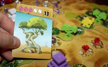 Der Spieler pflanzt einen Baum.