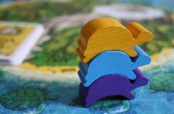 Auf Mahé werden Schildkröten auch mal gestapelt.