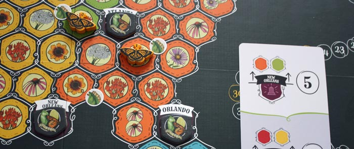 Beispiel 4: Der Spieler wertet seine Schmetterlinge.