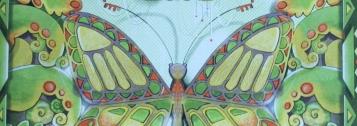 Mimikri – Die Suche nach dem Paradiesfalter